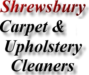 Find Shrewsbury Carpet Cleaner Business Directory Marketing
