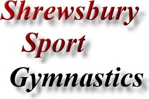 Find Shrewsbury Sports promotion - gymnastics